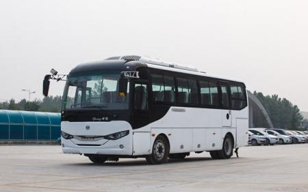 Shore Trips and Tours coach